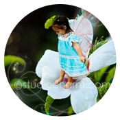 studiocharm hibiscus fairy storybook canvas